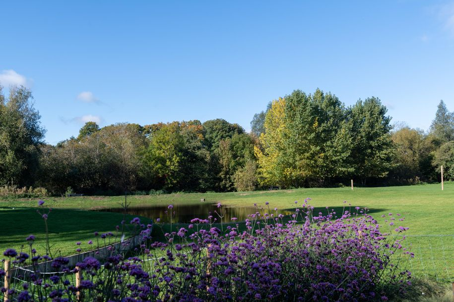 Willow Place - 2 bed apartment in Welwyn Garden City - Hertfordshire